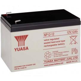 Batteria Piombo-Acido per UPS 12 V 12 Ah, NP12-12